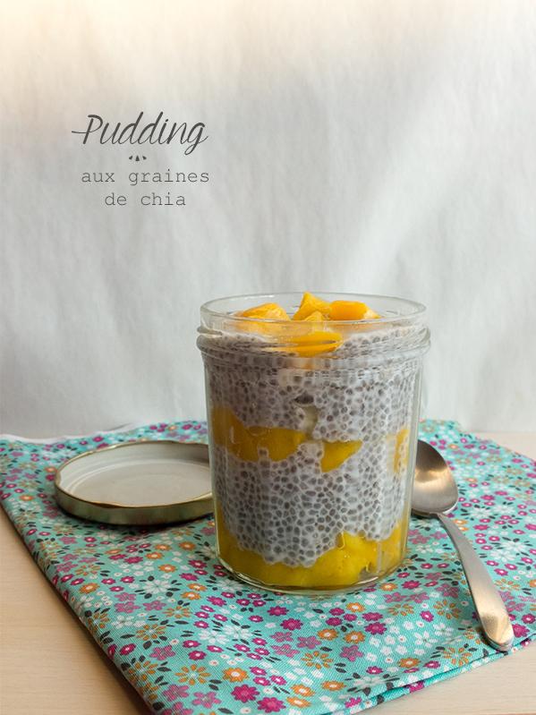 Pudding aux graines de chia1